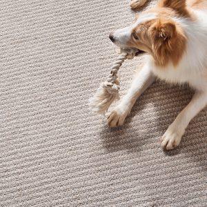 Abbey's Road Fairy Wings carpet | Custom Floors