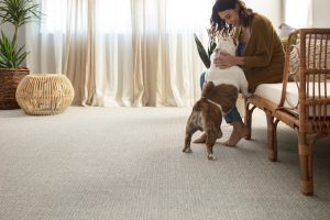 Fetch Briarwood carpet | Custom Floors