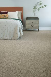 Barkside mesa view carpet | Custom Floors